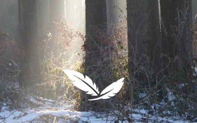 Raunächte – eine magische Zeit