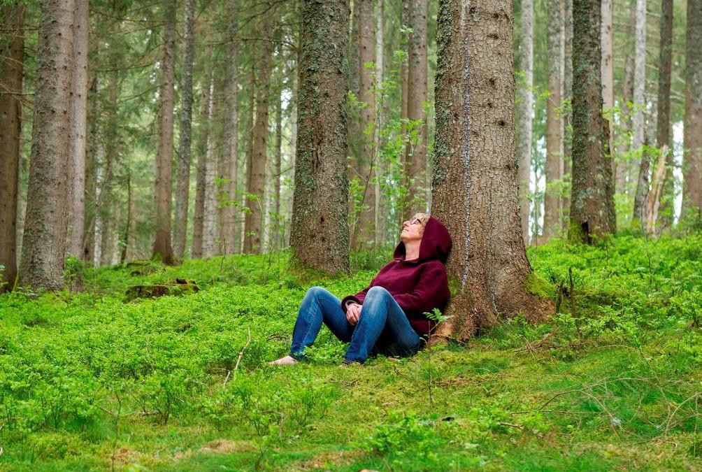 Wie die AOK Baden-Württemberg das Waldbaden mit mir erlebt