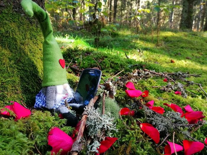 Christine-Grabrucker-Naturwege-Seelenpfade-Kennenlerngespraech